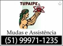 B4 RS Tupaipe - Cachoeira do Sul - RS